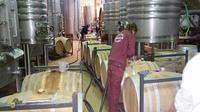 Wine Tour of Ribera del Duero from Madrid
