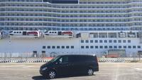 Private Transfer from Fiumicino Airport to Civitavecchia Port - Tour Option Available
