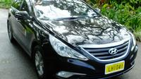 One-Way Airport Transfer from Nadi Airport Private Car Transfers