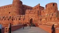 Delhi to Agra Full-Day Tour of Taj Mahal and Agra Fort with Mehtab Bagh