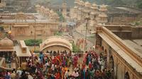 Private Half-Day Tour of Jaipur and the Monkey Temple