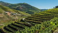 8 Day Tour: Portuguese Wine Tour from Lisbon