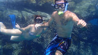 Glass-Bottom Boat Ride and Snorkel Tour in Cabo San Lucas
