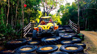Jungle Buggy Tour from Playa del Carmen Including Cenote Swim