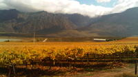 Private Shore Excursion: Cape Winelands Tour from Cape Town