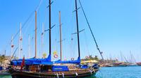 Blue cruise around Bodrum bays