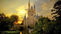 Disneyland or Disneysea 1-Day Passport Ticket and Private Transfer from Tokyo