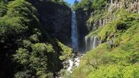 Explore Nikko Day Trip: Toshogu Shrine, Great Waterfall and Sake Brewery including Return Train Ticket