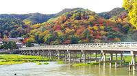 Private Kyoto Arashiyama Custom Half-Day Tour by Chartered Vehicle