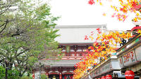 Private Tokyo Custom Full-Day Tour by Chartered Vehicle