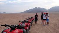Half-Day Quad Bike Safari and Giza Pyramids Tour