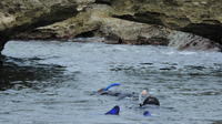 Combo Stingray-Feeding and Multi-Reef Snorkel Tour