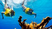 All Inclusive Cozumel Highlights Tour from Cancun