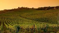 Badia a Passignano Visit and Chianti Tasting Experience