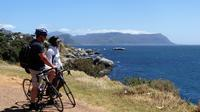 Cape Peninsula Guided Road Bike Day Tour from Cape Town