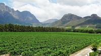 Franschhoek Winelands Guided Half-Day Tour from Cape Town
