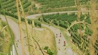 E-bike Barolo tour with wine tasting