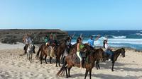 Natural Pool Horseback Riding Tour in Aruba