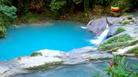 Private Tour: Blue Hole Fern Gully Rainforest Adventure and The Bob Marley Mausoleum Tour from Kingston