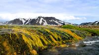 Landmannalaugar and Hekla Volcano Guided Day Tour from Reykjavik