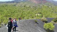 Mount Etna Half-Day Tour