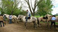 Gaucho Day Tour Ranch in San Antonio de Areco from Buenos Aires