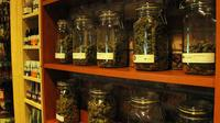 Amsterdam Coffee Shop Crawl and Tour of Cannabis College