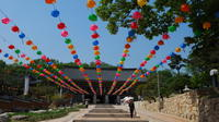 Seoul 4-Hour Afternoon Tour Including the Han River Cruise COEX Aquarium and Bongunsa Temple