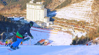 Snow Trip From Seoul