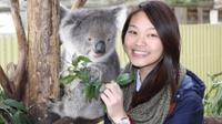 Maru Koala and Animal Park General Entry Ticket