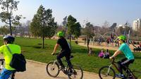Panoramic Santiago Bike Tour