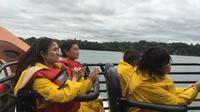 Niagara Falls Sightseeing tour of USA Side plus Jetboat