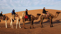 9-Night Mountains and Desert Small-Group Adventure from Marrakech