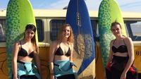 Introduction to Surfing Course in Cabrera de Mar