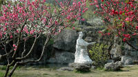 Private Tour: Essence of Yichang Day Tour