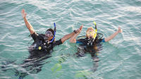Dives Packages with Transfers in Tenerife