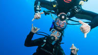 PADI Discover Scuba Diver with 1 dive in the Ocean