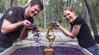 Small-Group Wine-Tasting Tour in Margaret River