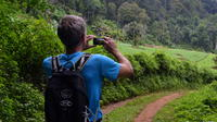 Full-Day Hike and Zipline Tour in Mae Sa Valley from Chiang Mai