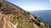 Private Tour: Peljesac Vineyards and Oyster Farms from Dubrovnik