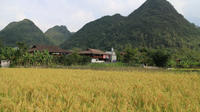 Bac Son Valley*