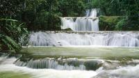 Private YS Falls Tour From Negril