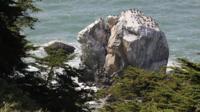 4-hour Walking Tour of Lands End in San Francisco