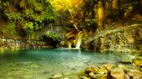 27 Falls of Damajagua*