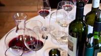 Full-Day Wine Tasting in Mendoza