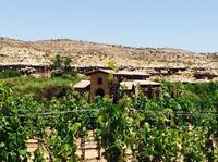 Alcantara Estate Vineyards Tasting Experience