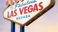 Private Las Vegas Airport Round-Trip Transfer: 15 Passenger Van
