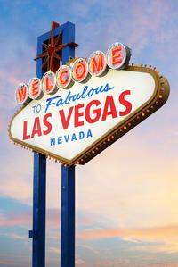 Private Las Vegas Airport Round-Trip Transfer: 27 Passenger Minibus