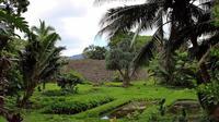 Ohana Adventure: Circle Island Tour