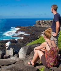 Galapagos Islands Cruise: 5-Day Catamaran Sail Aboard the 'Nemo I'